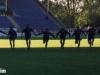 16. Spieltag: SVW - Oberhausen