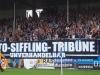 2. Spieltag: Hoffenheim II - SVW 1:2