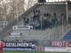 22. Spieltag: SVW - Ulm