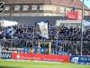 23. Spieltag: 1860 München - SVW 1:1