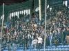 23. Spieltag: SVW - FC Homburg 2:0