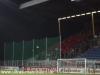 25. Spieltag: SVW - Freiburg
